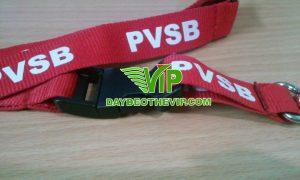 day-deo-the-pvsb (6)